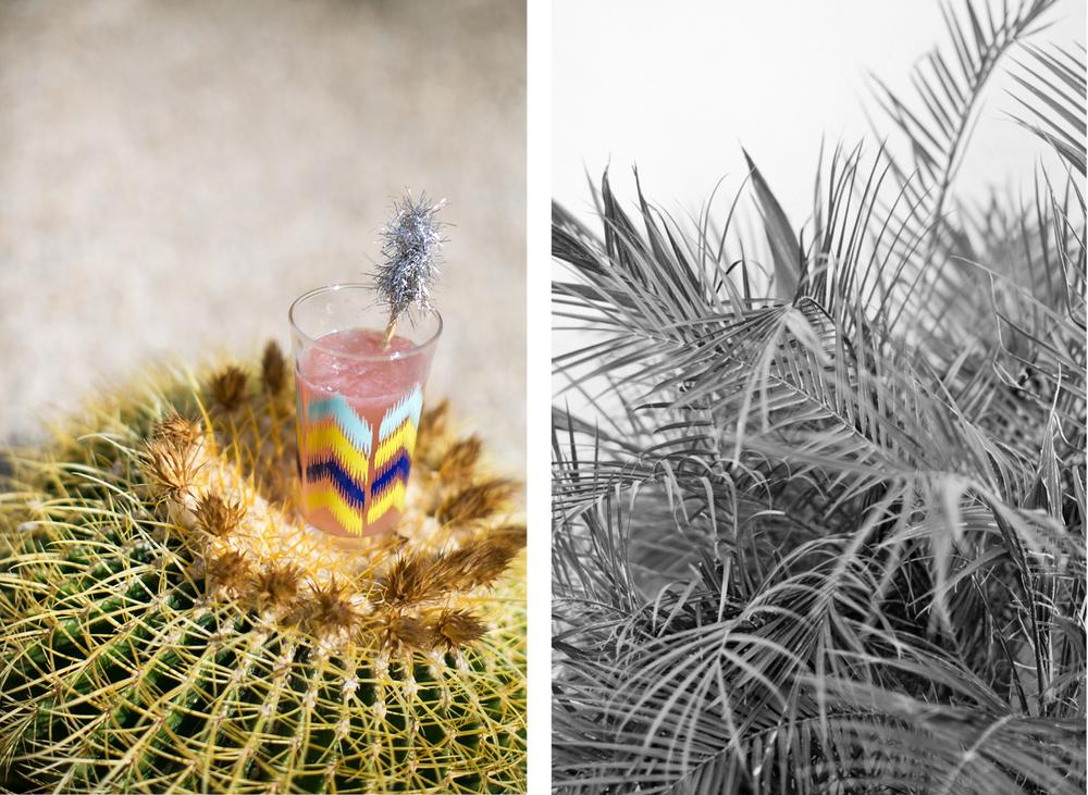 sparkling grapefruit soda / photo: lily glass for ginger & birch