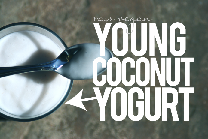 How To Make Vegan Coconut Yogurt