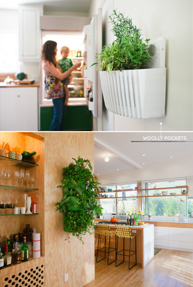 Indoor Herb Gardens PURE MAMAS