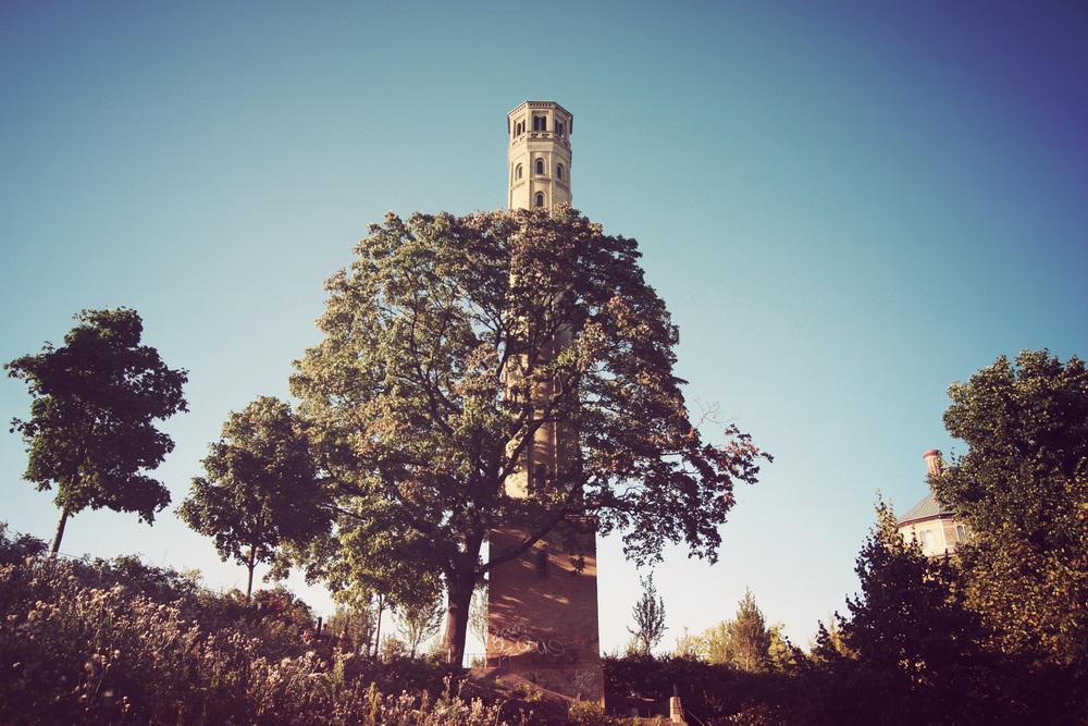 Park am Wasserturm - this park is so cool.