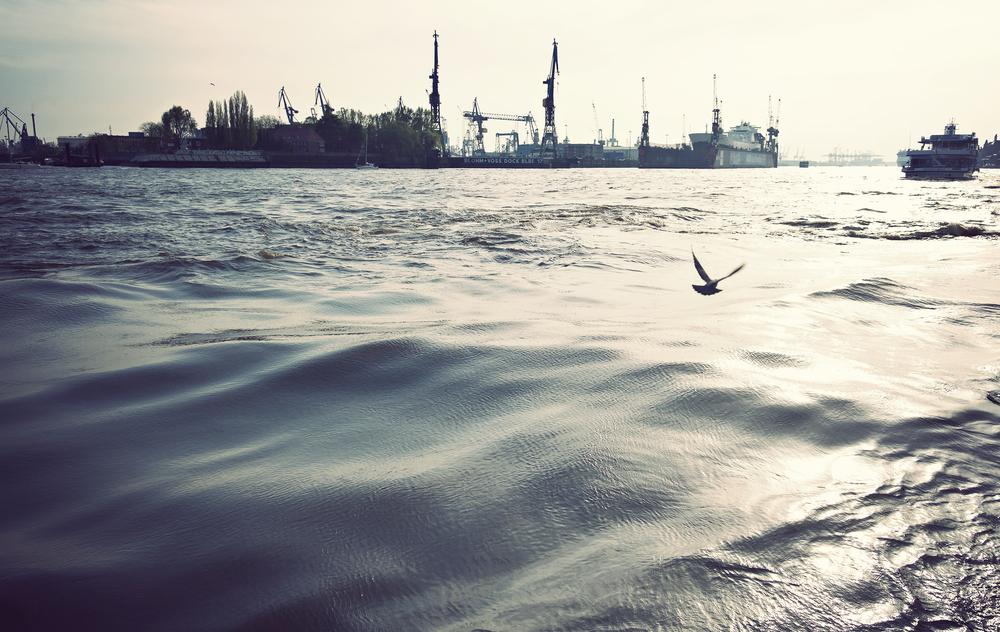 HAM_Harbour_07.jpg