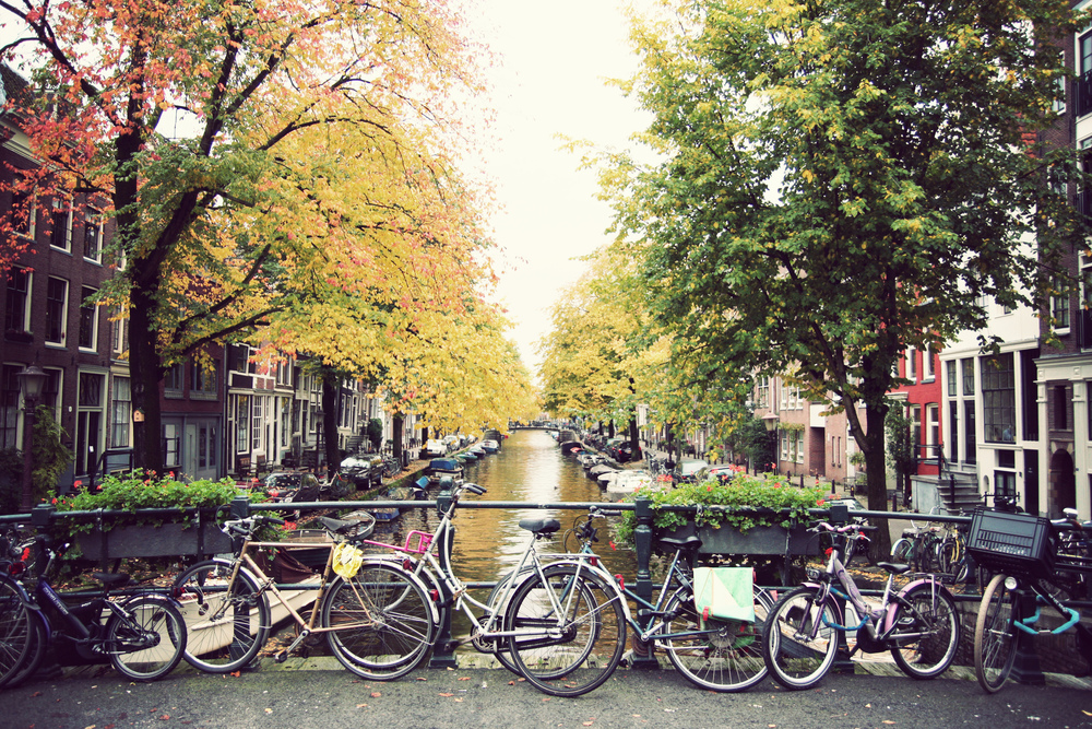 Beautiful fall colors in Jordaan.