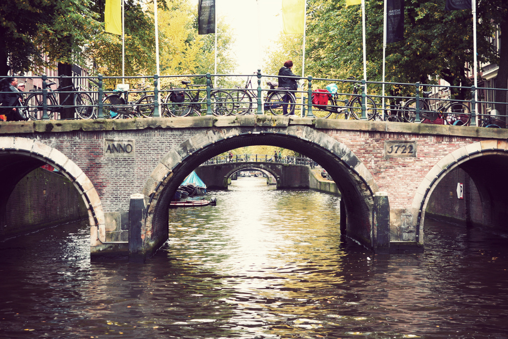 AMS_Bridges.jpg