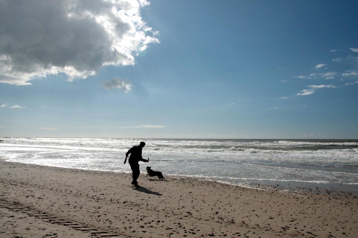 dk_jutland_beach_2.jpg
