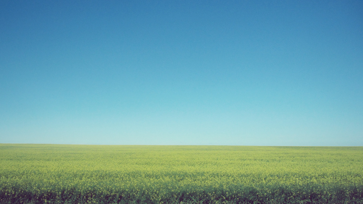 the prairies_01.jpg
