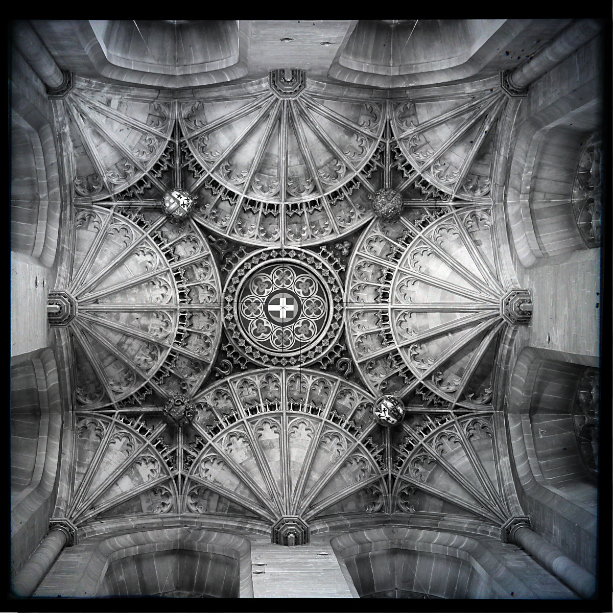 cantebury cathedral_ceiling_ttv.jpg