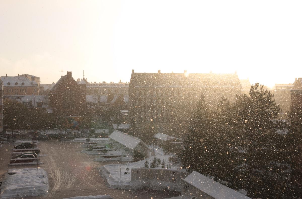 cph_snowysunny.jpg