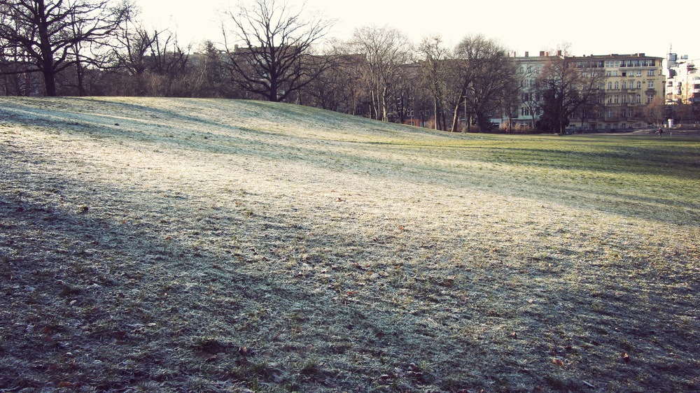 Frosty grass over Victoria Park