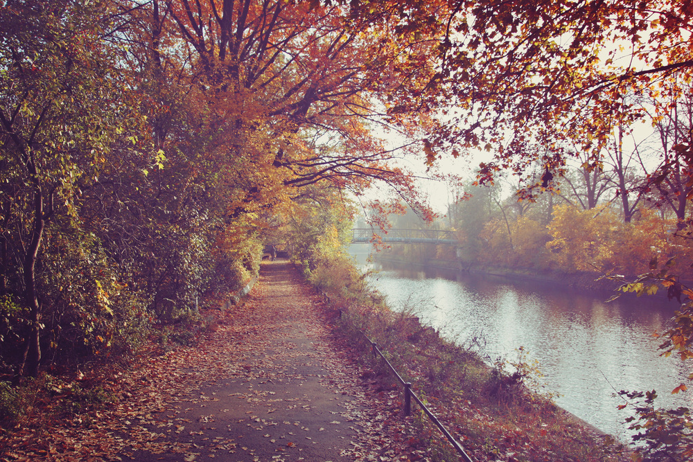 BER_Canal_01.jpg