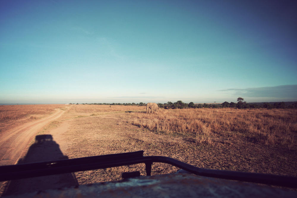 Wide view from the top of the Land Cruiser