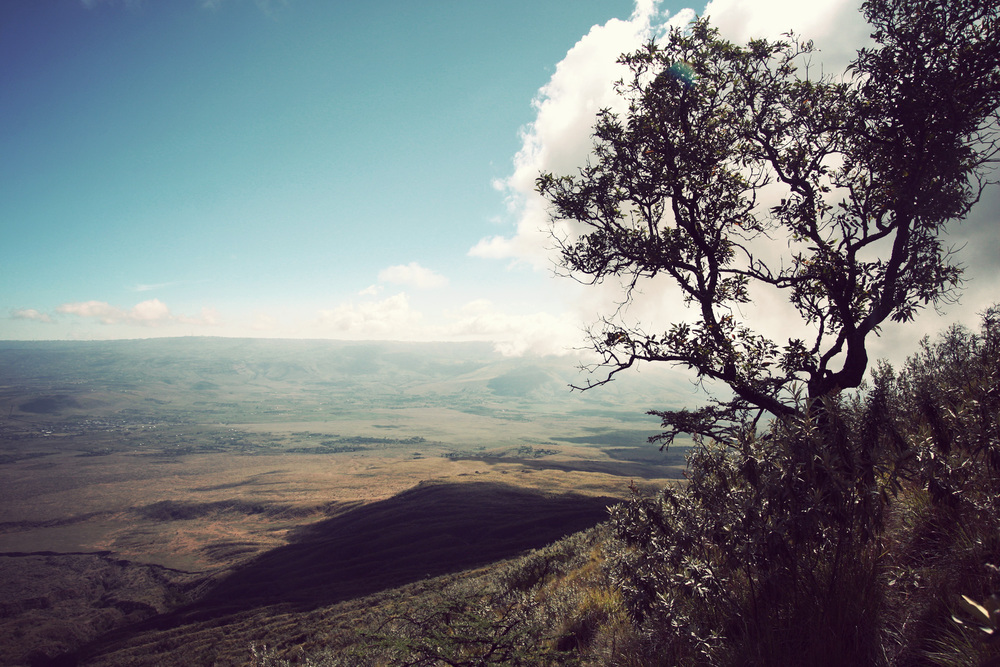 View to the Rift Valley