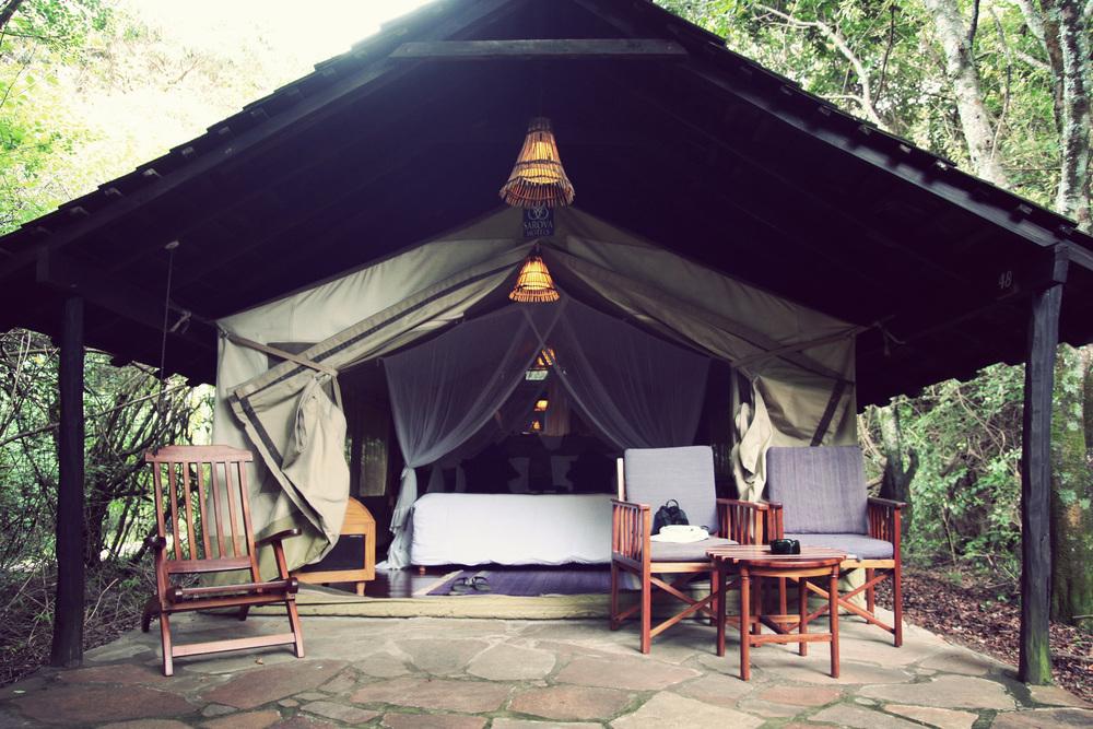 Day08_Maasai-Mara_Sarova-Lodge_03.jpg