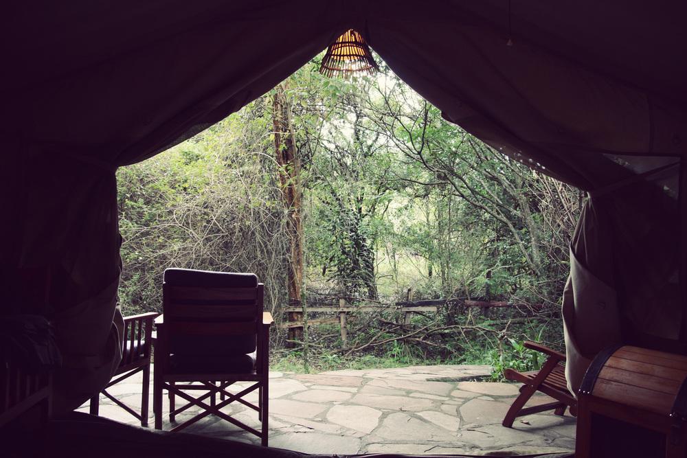 Day08_Maasai-Mara_Sarova-Lodge_04.jpg