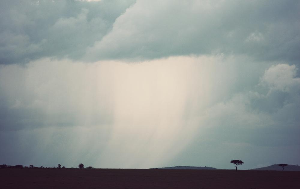 Day08_Maasai-Mara_02.jpg