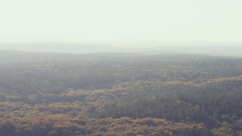 Autumn_03.jpg