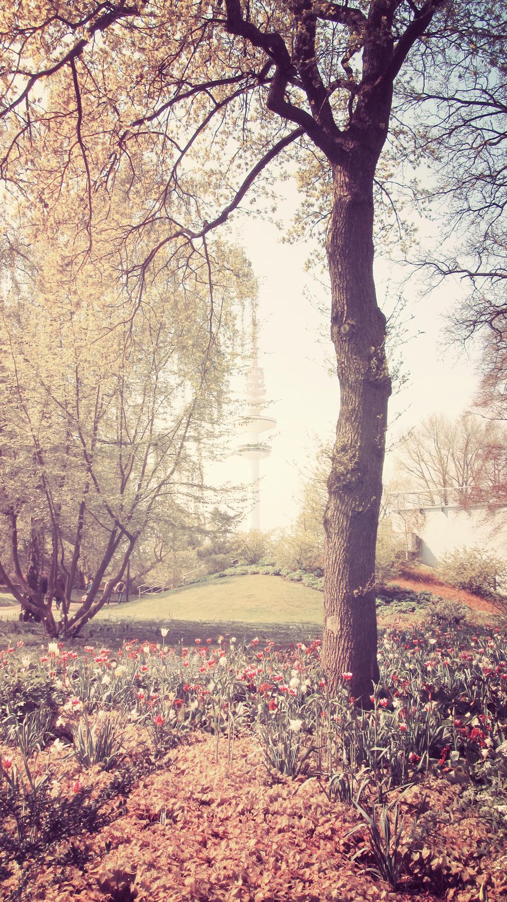 Planten un Blomen_01.jpg