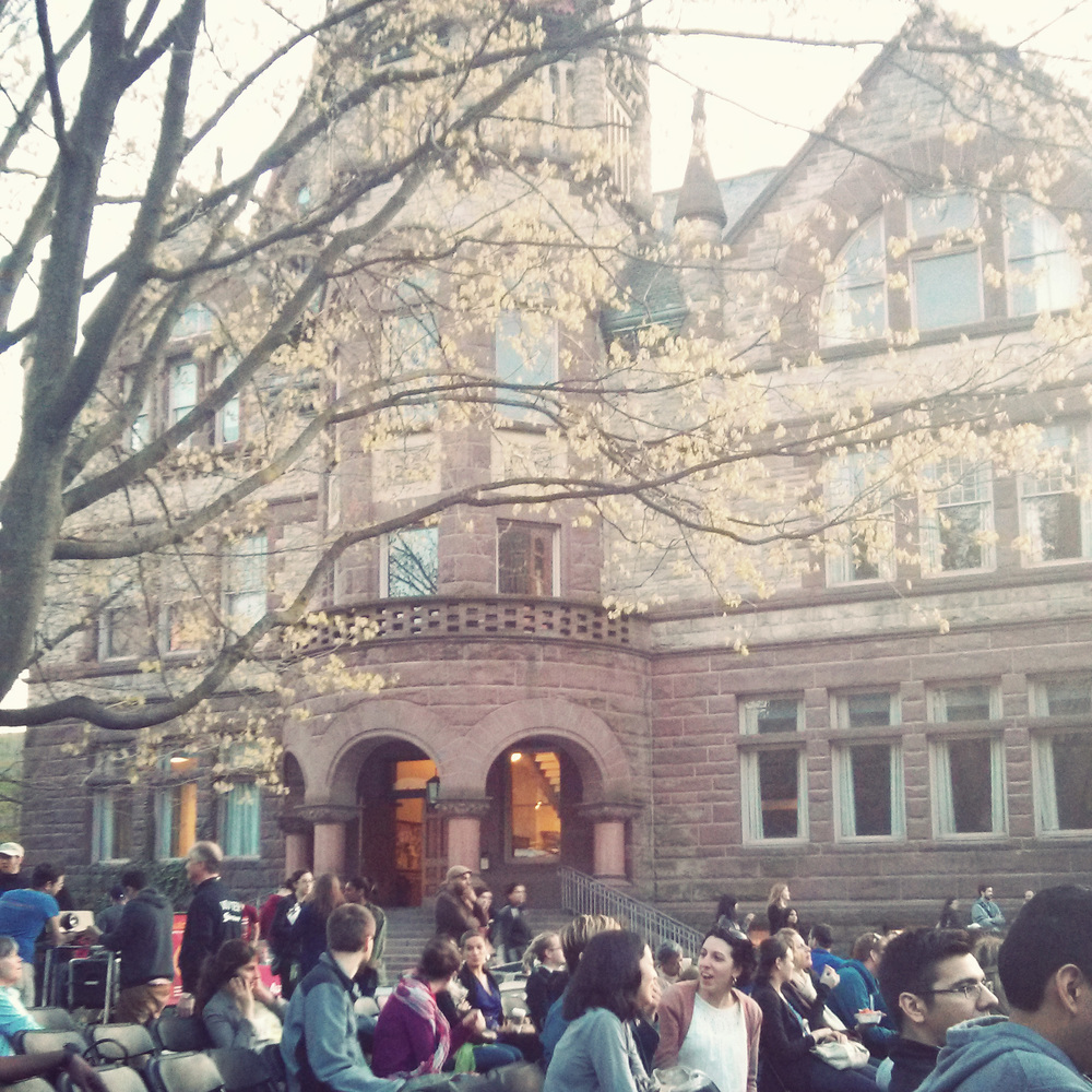 Sitting under a nearly-blooming tree for the free outdoor screening of Brothers Hypnotic at the U of T Quad.
