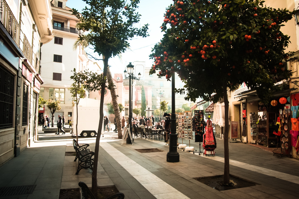 Your run-of-the-mill streetscape in Sevilla; orange trees, granite pavers, and a feeling of pure bliss while relaxing in the shade.