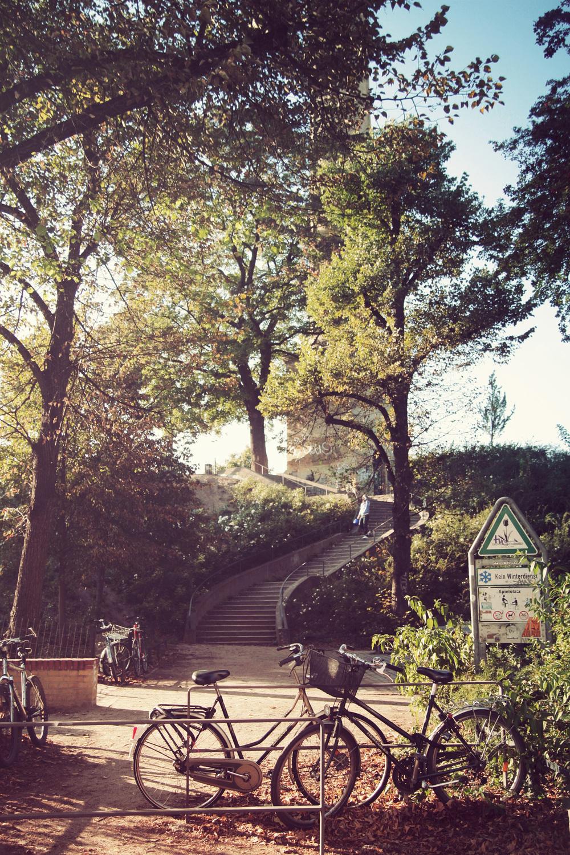 Park-am-Wasserturm_12.jpg