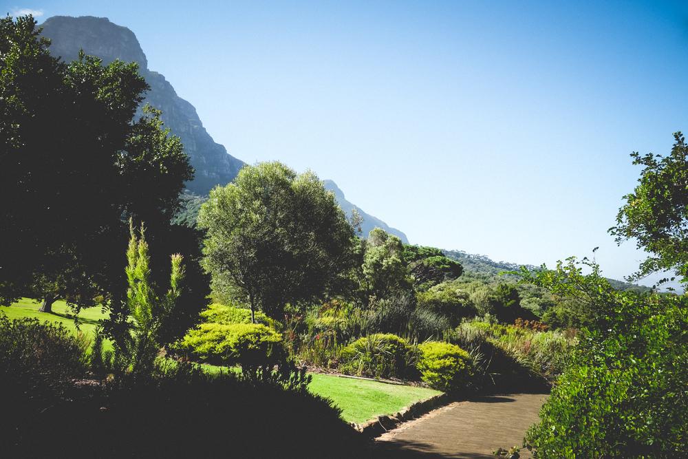 Kirstenbosch-30.jpg
