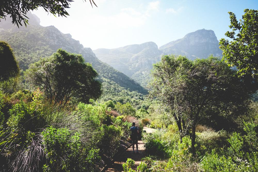Kirstenbosch-34.jpg