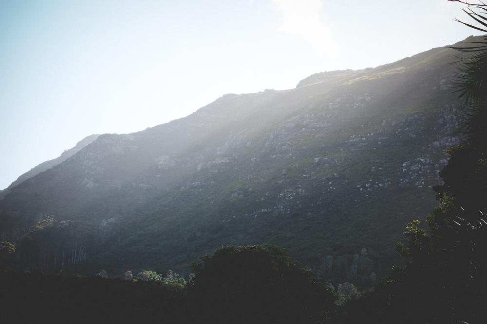 Kirstenbosch-54.jpg