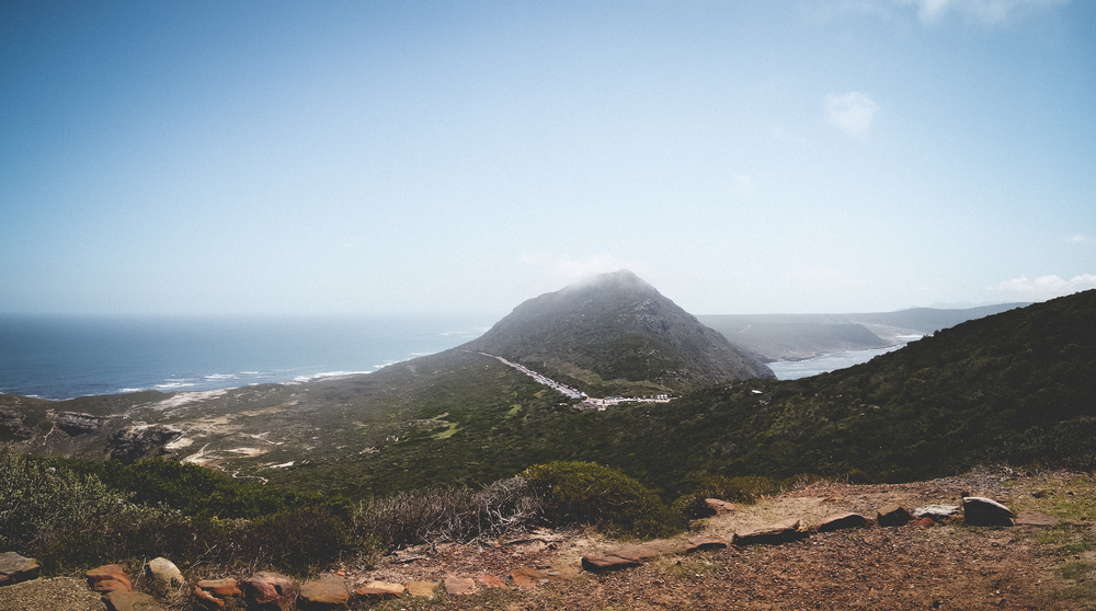 Cape Point Fynbos-7.jpg