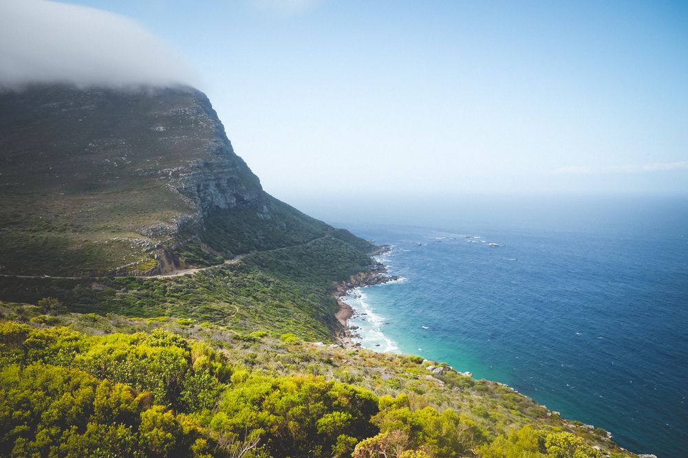 Cape Point Fynbos-20.jpg