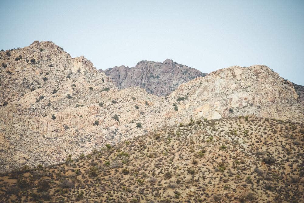 Mojave-Desert-27.jpg