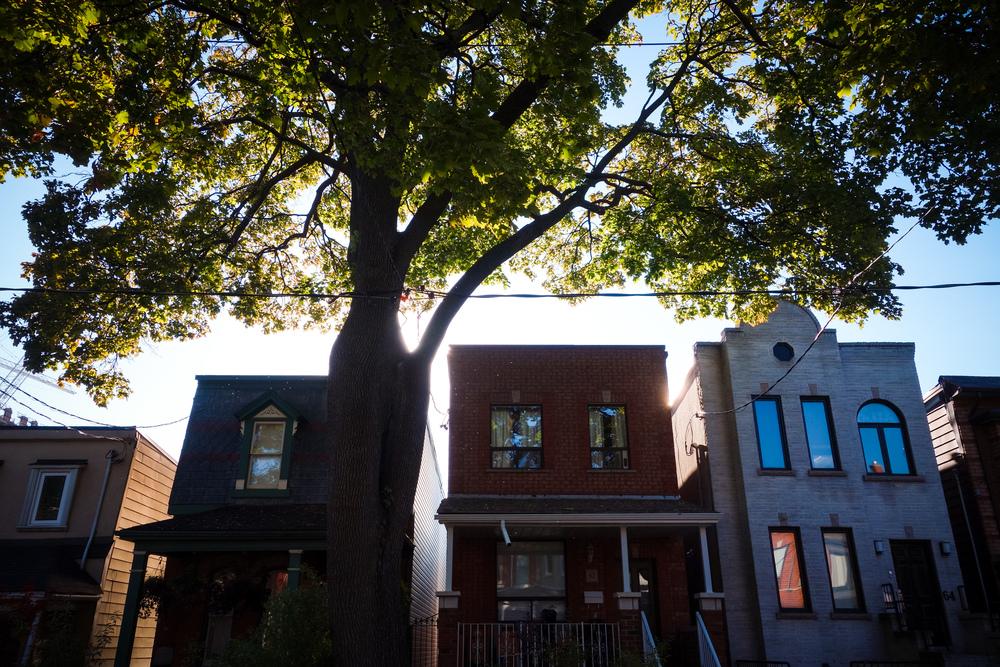 Toronto-Autumn-12.jpg
