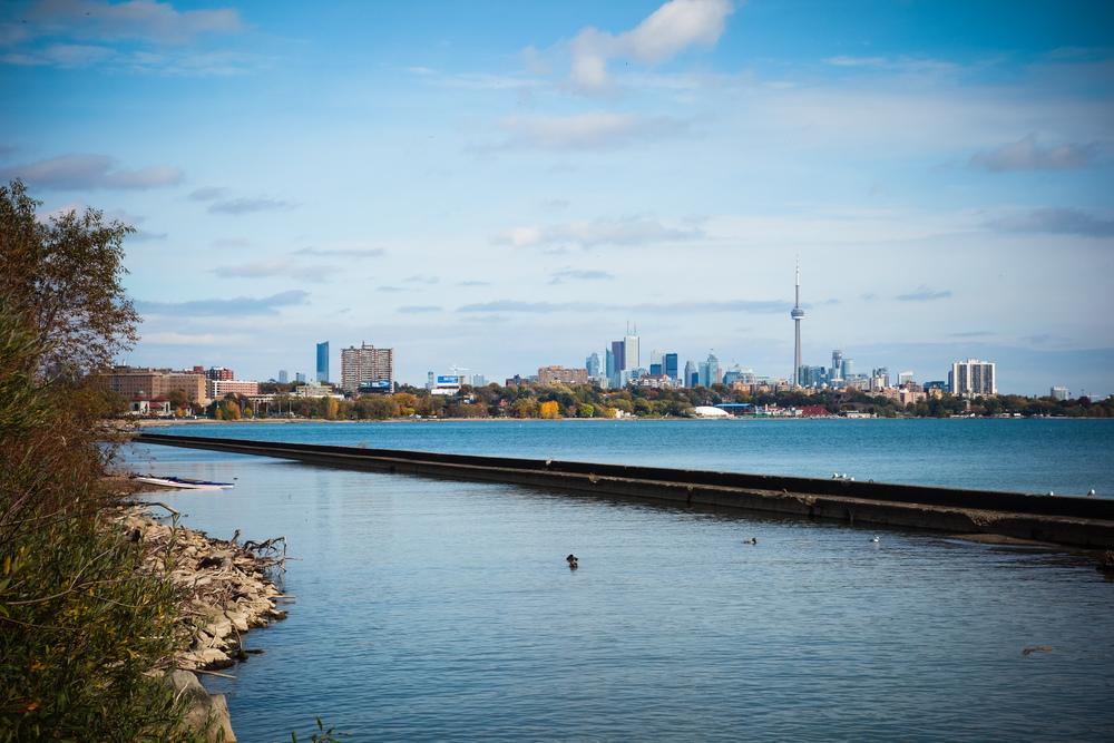 Toronto-Autumn-19.jpg