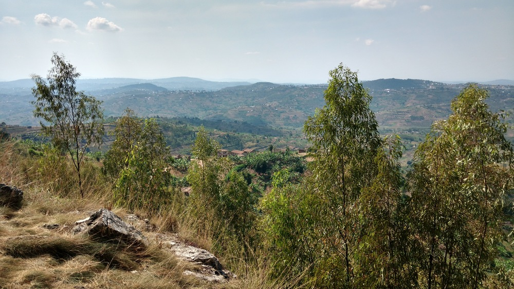 A view over the rolling hills of rural Rwanda on our ill-fated climbing adventure.