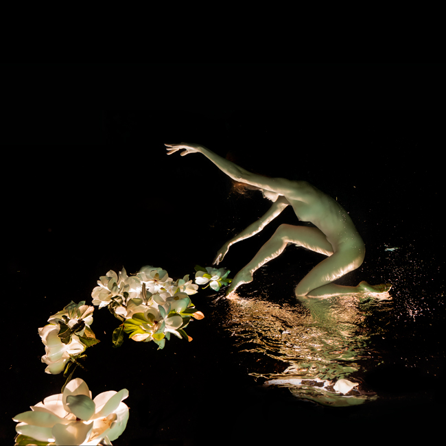 magnolia_11.jpg