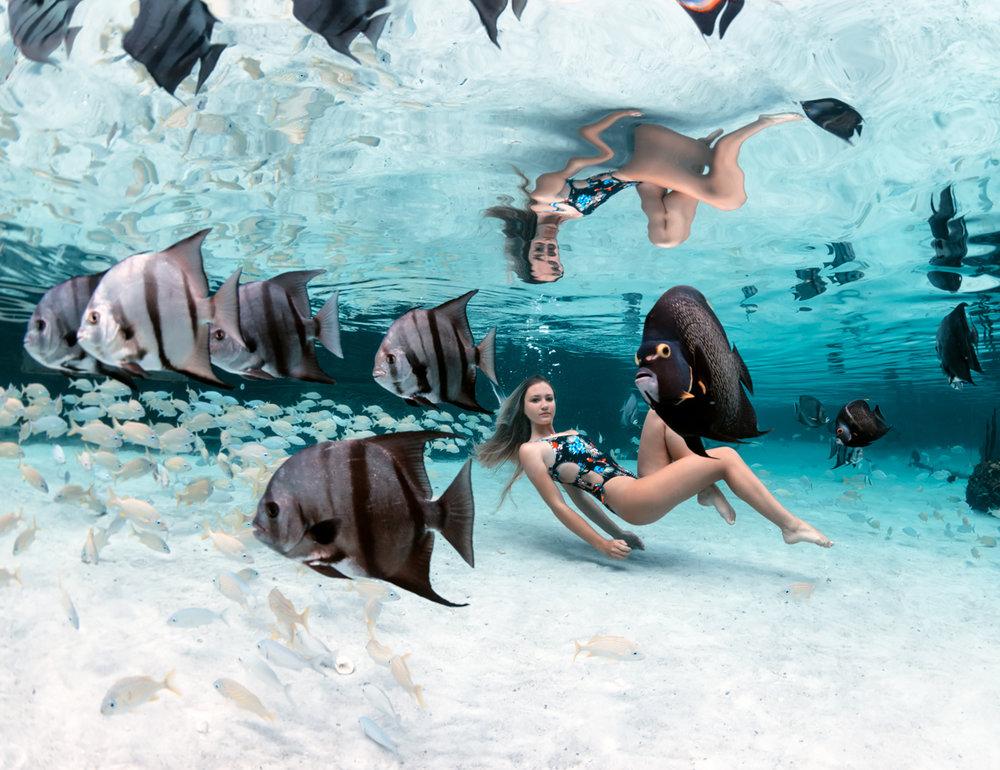 sls_underwater271web.jpg