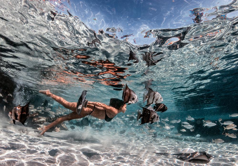 sls_underwater2051.jpg