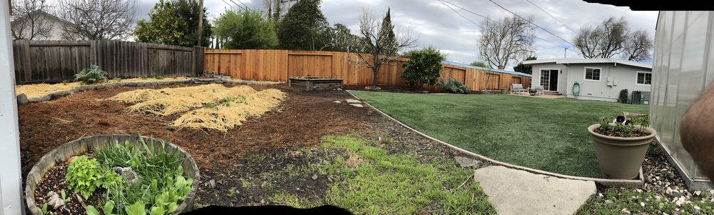 Backyard, garden, small fruit tree orchard, new patio.