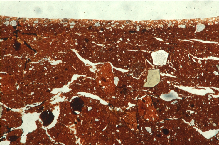 Example of a soil thin sction under microscope