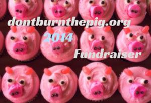 dbtp_donations_2014.jpg