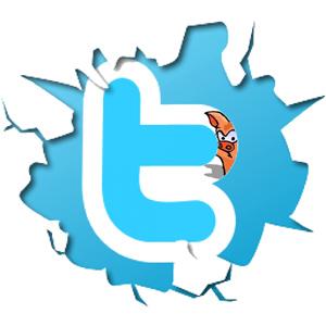 twitter_logo_w_dbtp.jpg