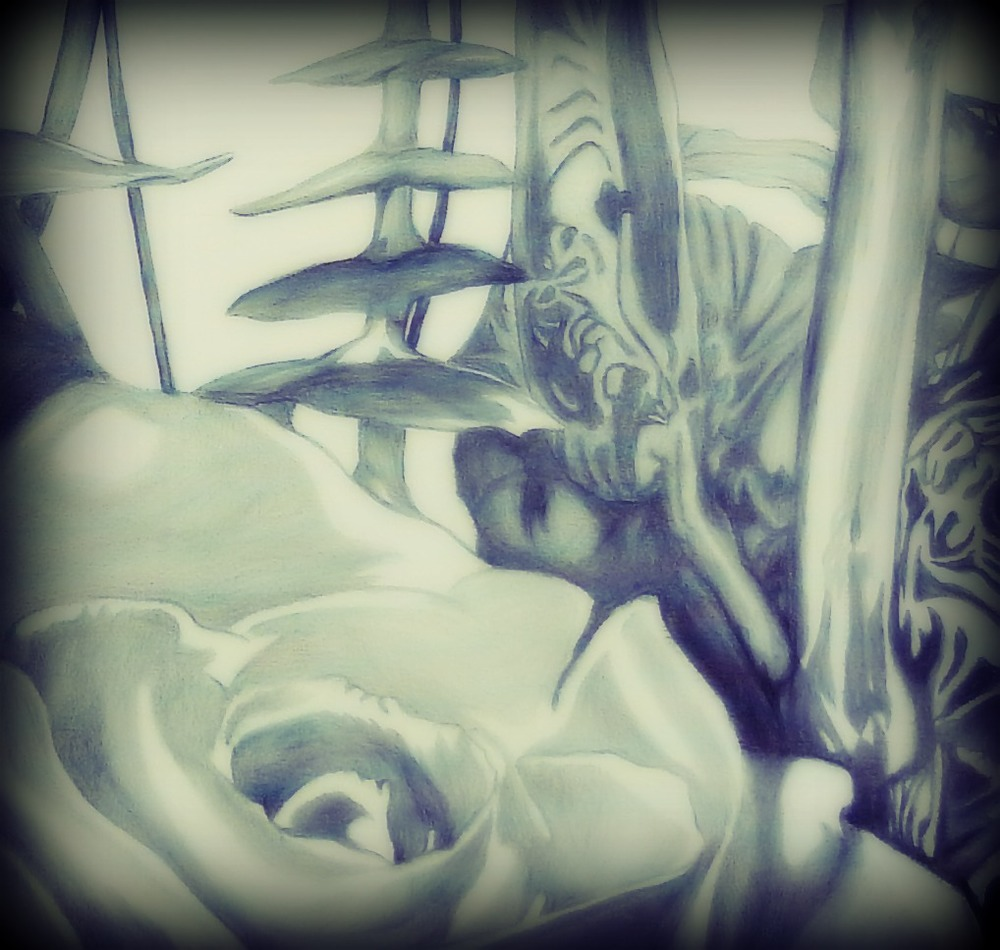 Roses-drawing-detail.jpg