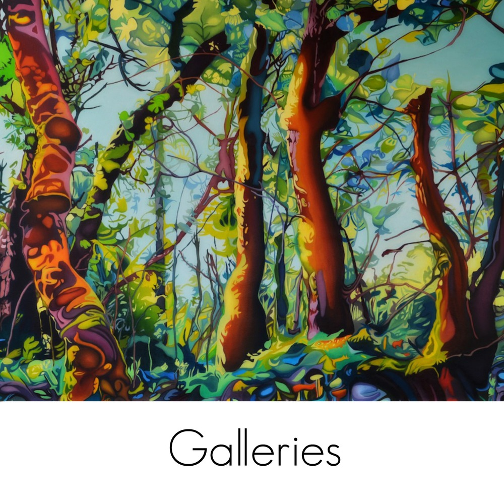 galleries-forest