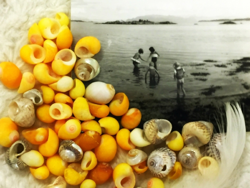 shells and old photo