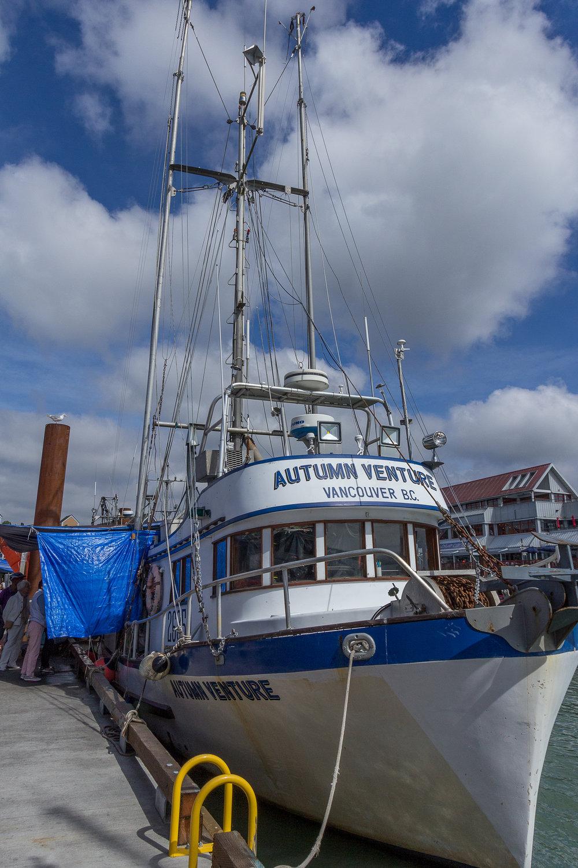 Docks 2017-016.jpg