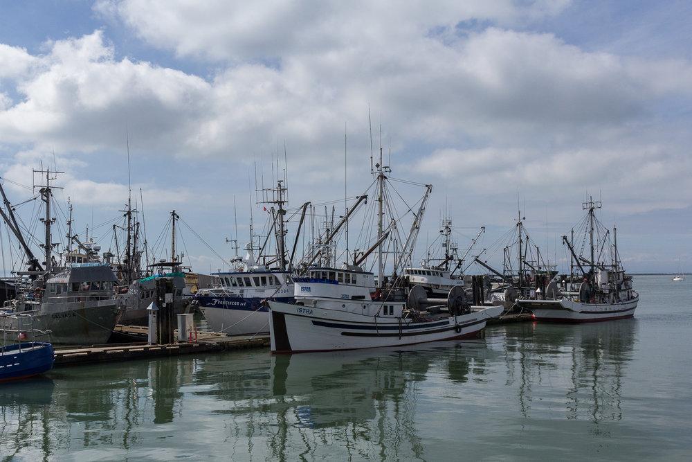 Docks 2017-034.jpg