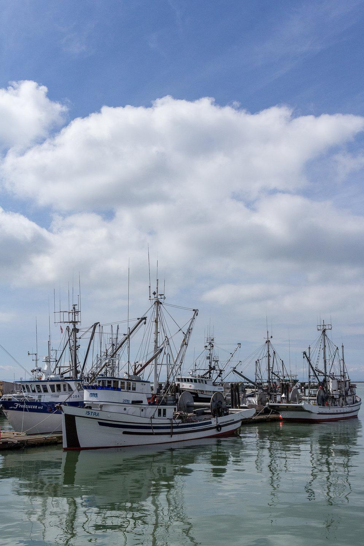 Docks 2017-035.jpg