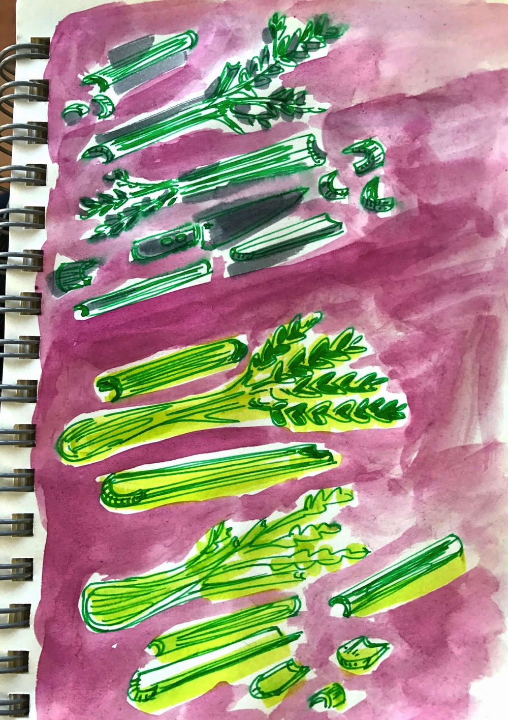 celery-sketchbook.jpg