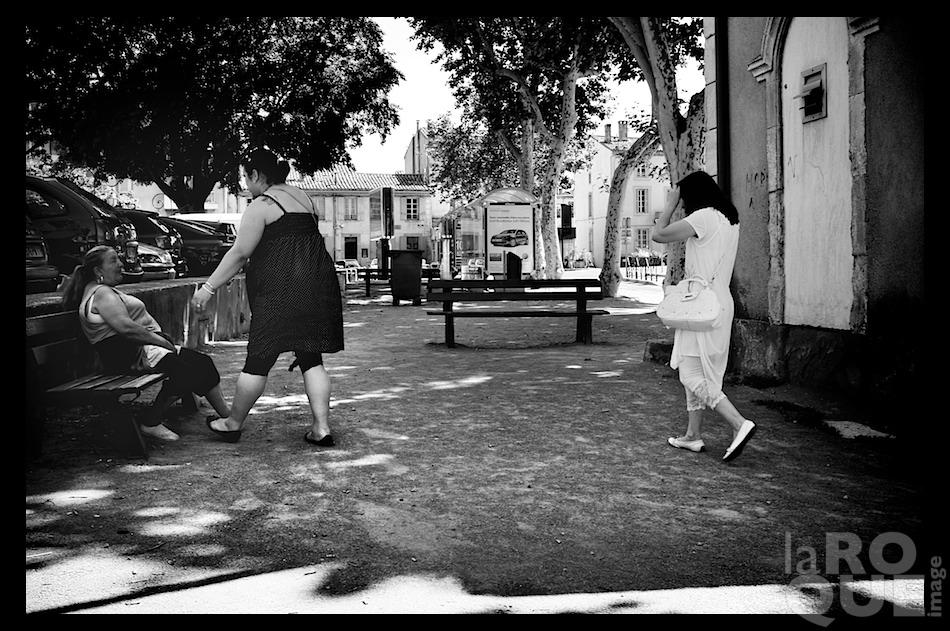 laROQUE_carcassonne28.jpg