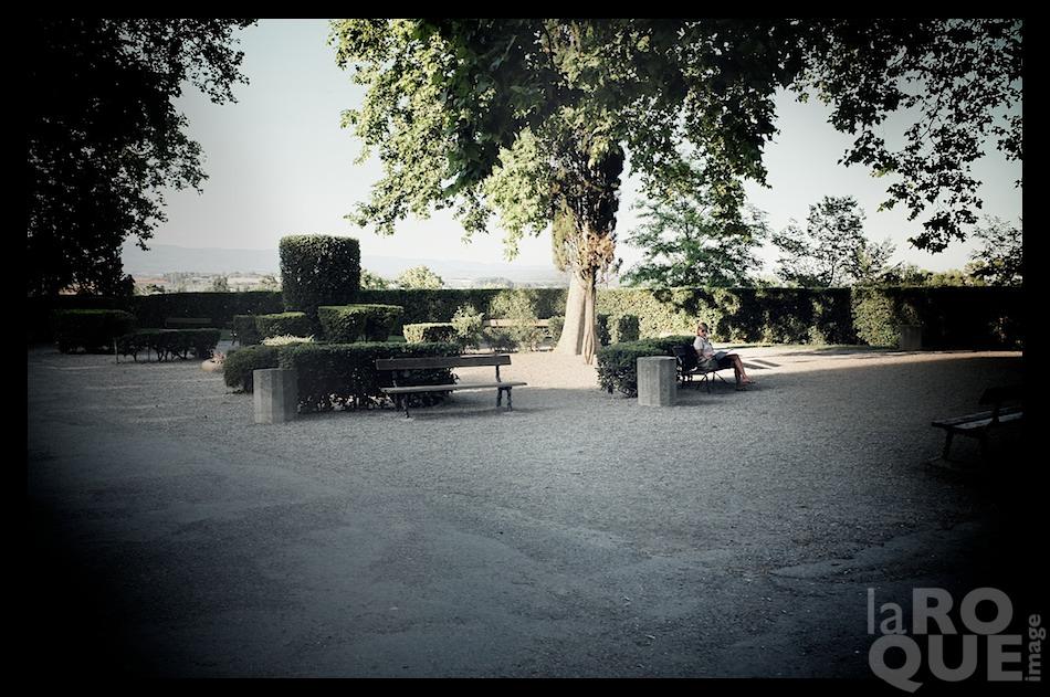 laROQUE_carcassonne6.jpg