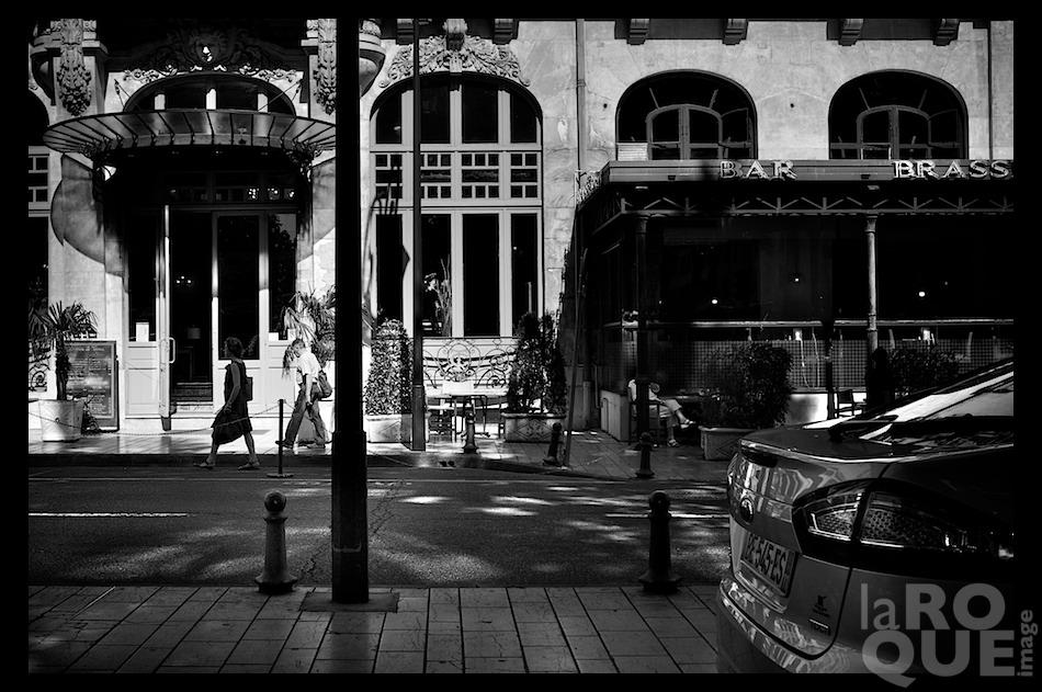 laROQUE_carcassonne24.jpg
