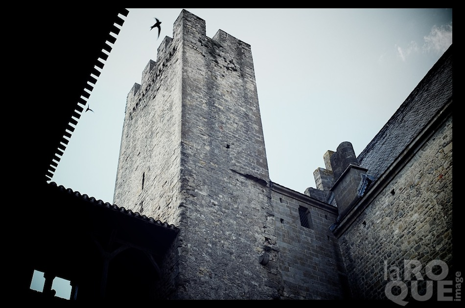 laROQUE_carcassonne1.jpg
